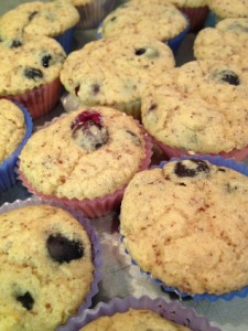 Mini Muffin Madness